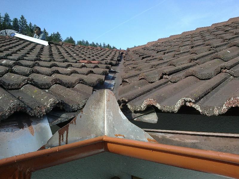 streha-213