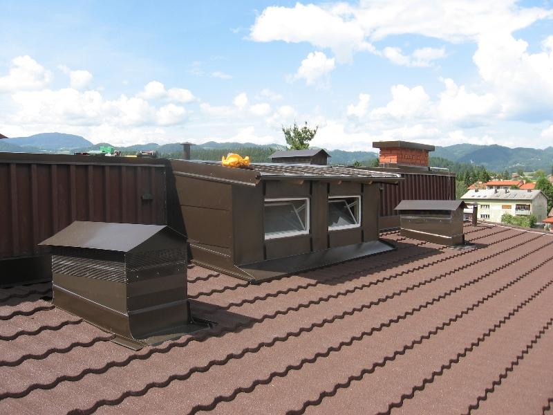 streha-111